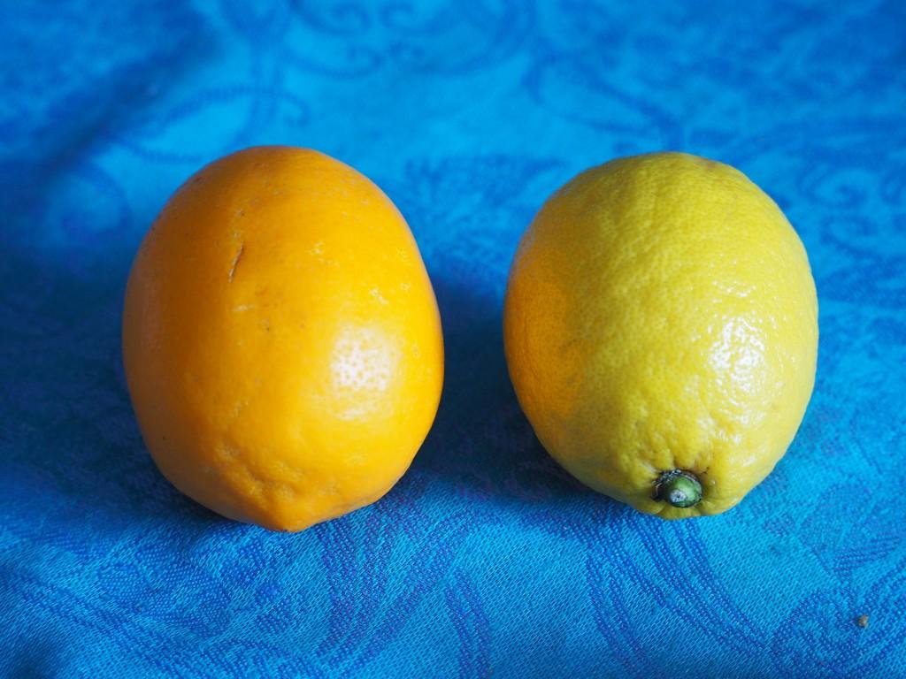 porównanie cytryn
